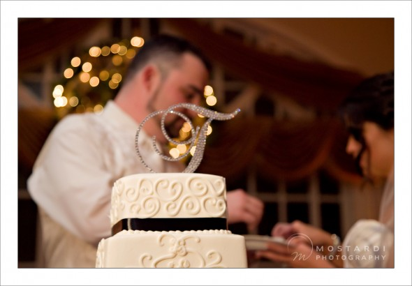 bucks county wedding photographers