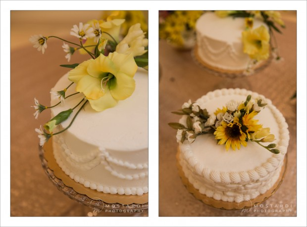 Harrisburg Wedding Photographer - Mostardi Photography - Barbara & George's Wedding Cake